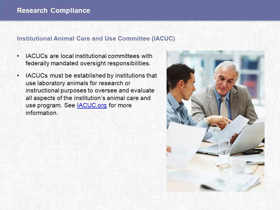IACUCs are local institutional committees with federally mandated oversight responsibilities.