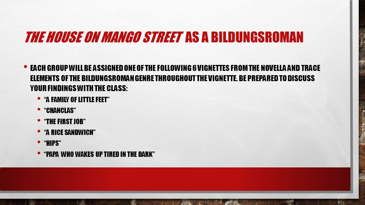 THE HOUSE ON MANGO STREET AS A BILDUNGSROMAN EACH GROUP WILL BE ASSIGNED ONE OF THE FOLLOWING 6 VIGNETTES FROM THE NOVELLA AND TRACE ELEMENTS OF THE B