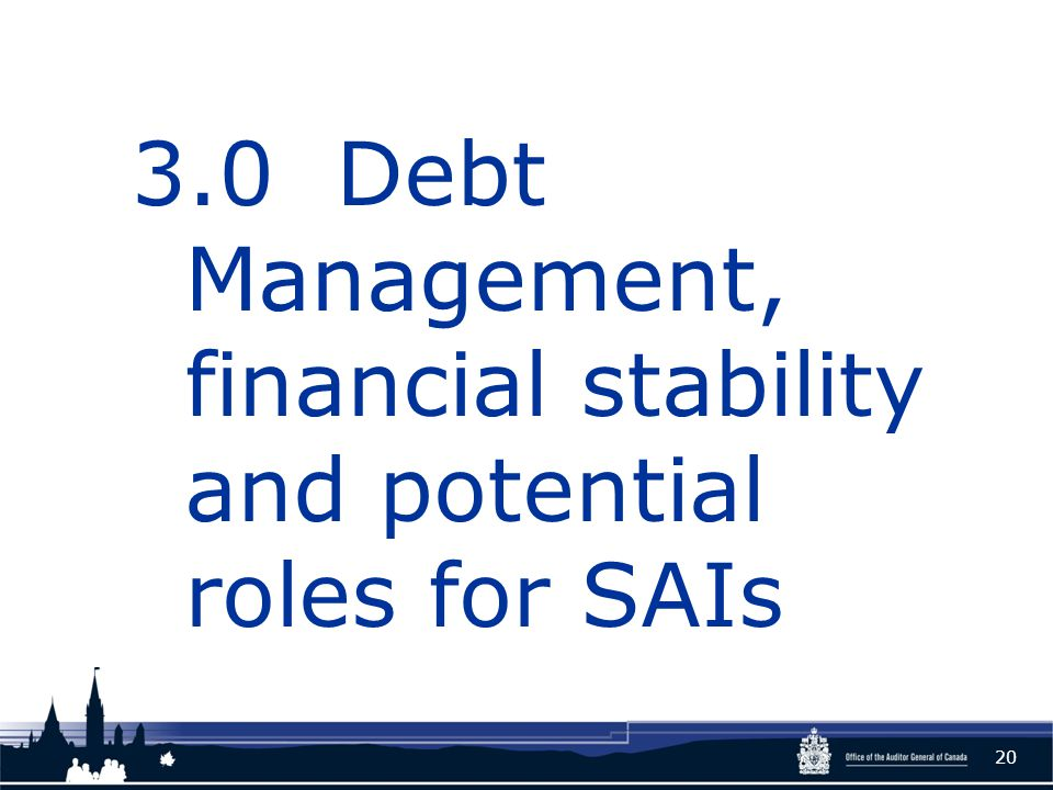 3.0 Debt Management, financial stability and potential roles for SAIs 20