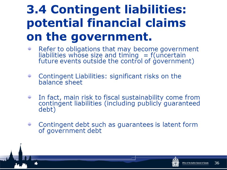 3.4 Contingent liabilities: potential financial claims on the government.
