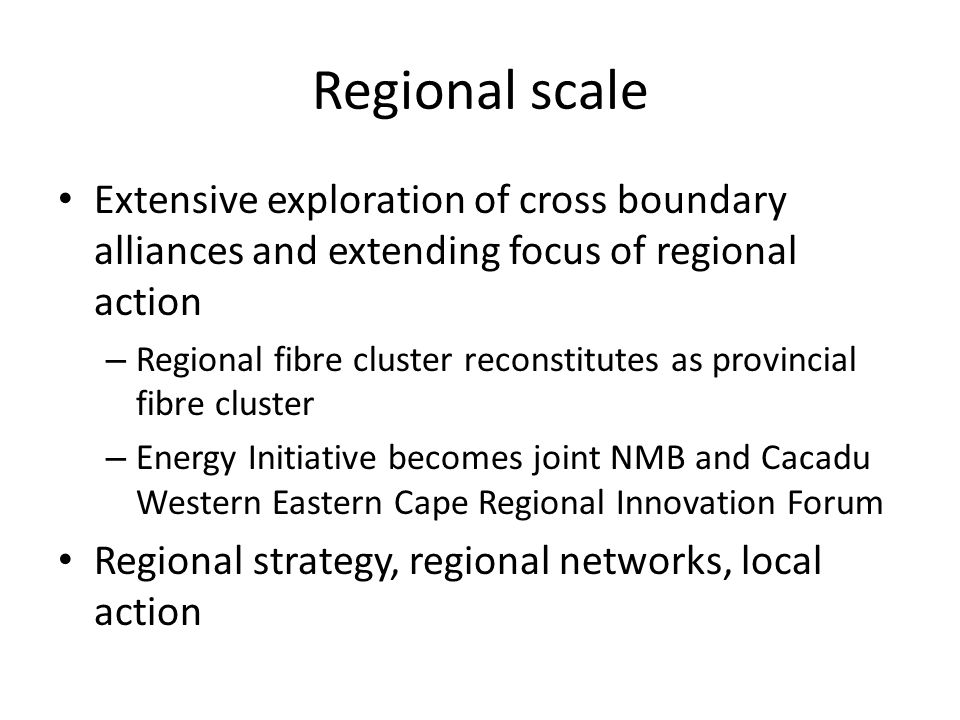 Regional scale Extensive exploration of cross boundary alliances and extending focus of regional action – Regional fibre cluster reconstitutes as provincial fibre cluster – Energy Initiative becomes joint NMB and Cacadu Western Eastern Cape Regional Innovation Forum Regional strategy, regional networks, local action