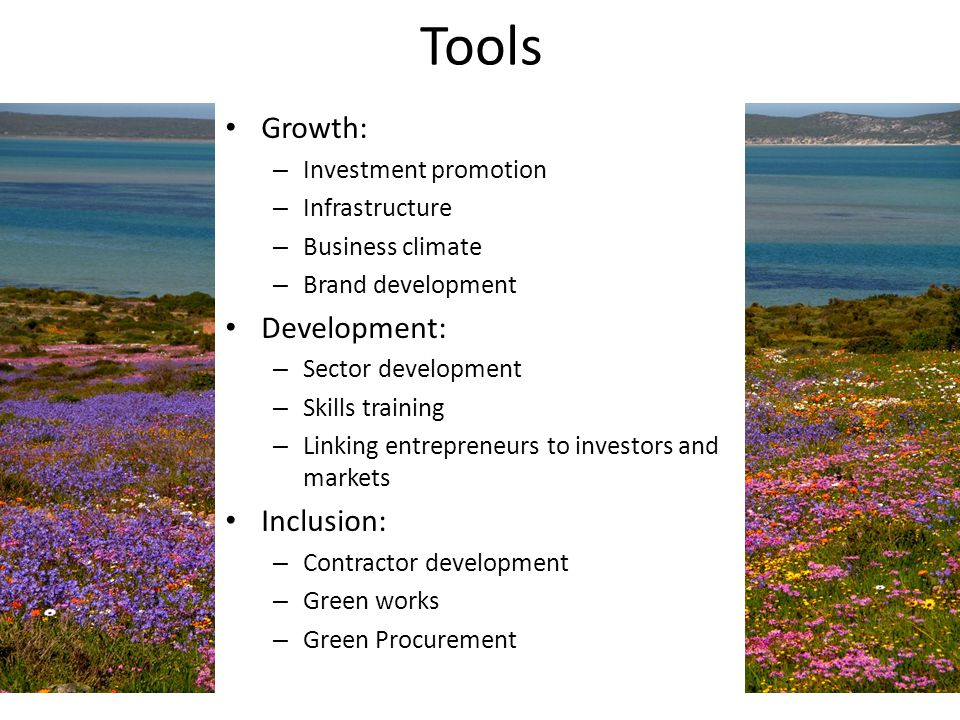 Tools Growth: – Investment promotion – Infrastructure – Business climate – Brand development Development: – Sector development – Skills training – Lin