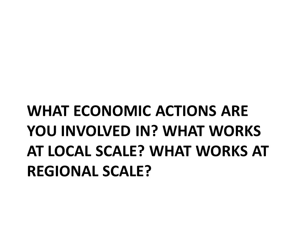 WHAT ECONOMIC ACTIONS ARE YOU INVOLVED IN? WHAT WORKS AT LOCAL SCALE? WHAT WORKS AT REGIONAL SCALE?