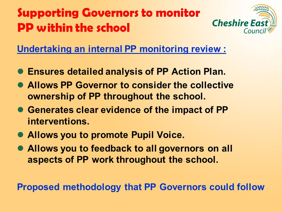 Supporting Governors to monitor PP within the school Undertaking an internal PP monitoring review : Ensures detailed analysis of PP Action Plan. Allow