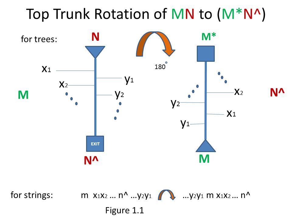Top Trunk Rotation of MN to (M*N^) M M EXIT N^ x1x1 x2x2 y1y1 y2y2 x1x1 x2x2 y2y2 y1y1 N for strings: m x 1 x 2 … n^ …y 2 y 1 …y 2 y 1 m x 1 x 2 … n^ for trees: M* 180 Figure 1.1