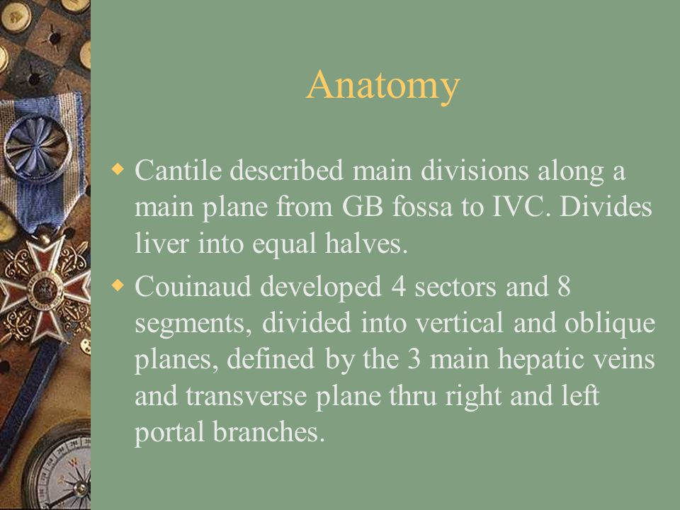 Anatomy  Cantile described main divisions along a main plane from GB fossa to IVC.