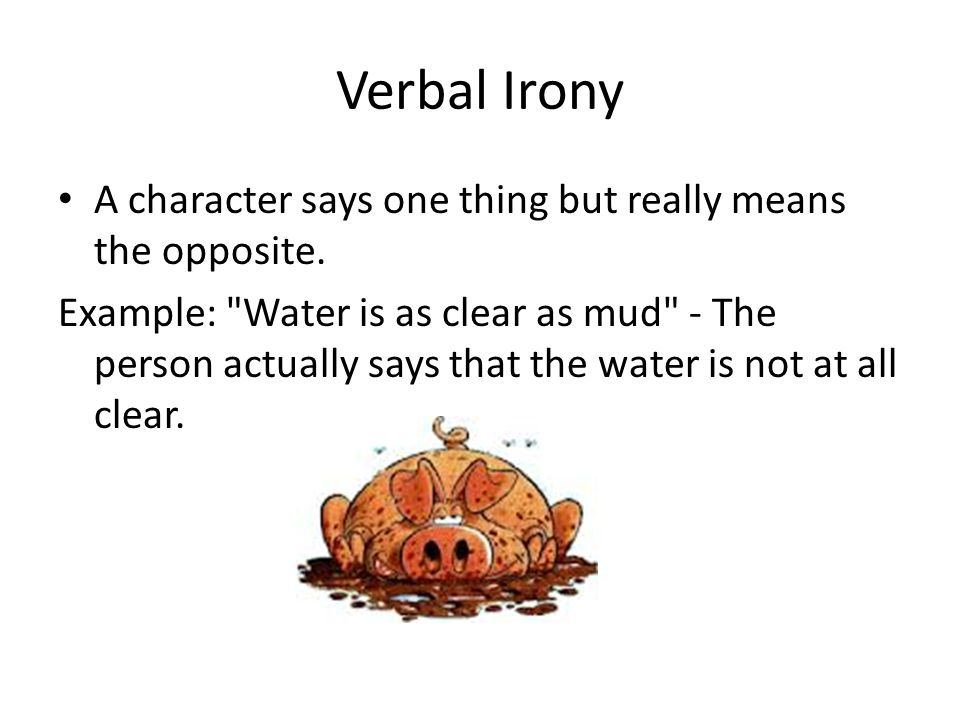 Verbal Irony A character says one thing but really means the opposite.