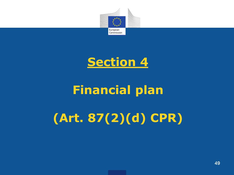 Section 4 Financial plan (Art. 87(2)(d) CPR) 49