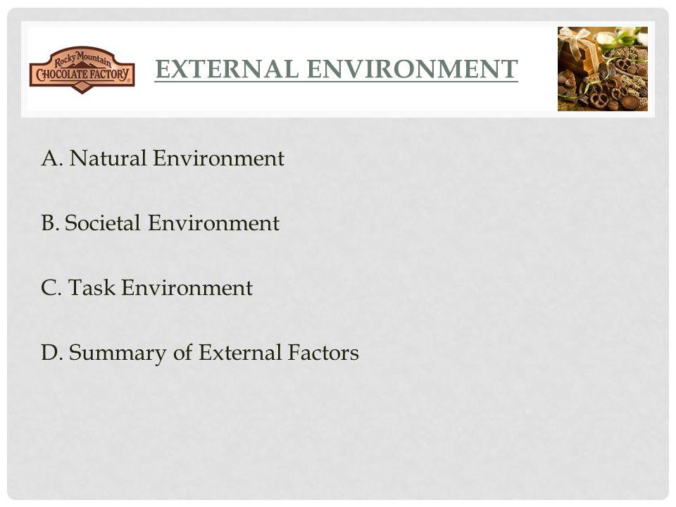 EXTERNAL ENVIRONMENT A. Natural Environment B. Societal Environment C. Task Environment D. Summary of External Factors