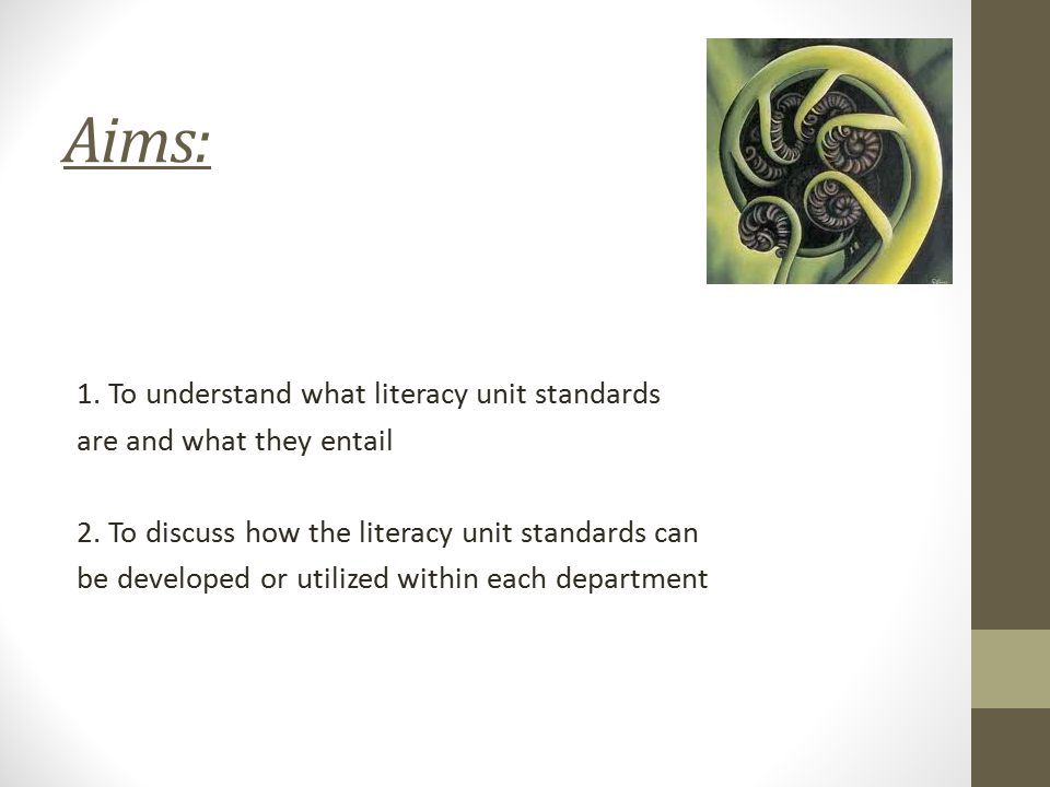 Aims: 1. To understand what literacy unit standards are and what they entail 2.