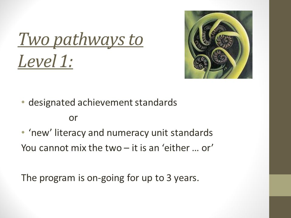 Two pathways to Level 1: designated achievement standards or 'new' literacy and numeracy unit standards You cannot mix the two – it is an 'either … or' The program is on-going for up to 3 years.