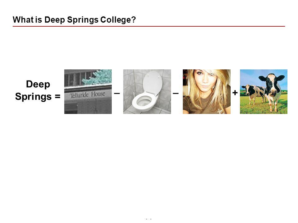 - Pit – BAAC What is Deep Springs College Deep Springs = __ +