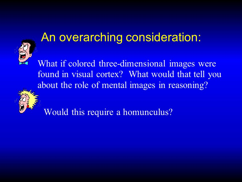 An overarching consideration: What if colored three-dimensional images were found in visual cortex.