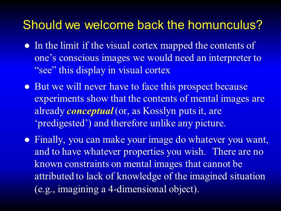 Should we welcome back the homunculus.
