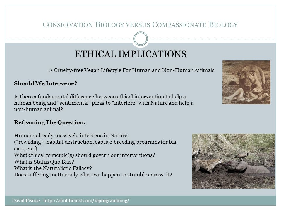 C ONSERVATION B IOLOGY VERSUS C OMPASSIONATE B IOLOGY David Pearce - http://abolitionist.com/reprogramming/ ETHICAL IMPLICATIONS A Cruelty-free Vegan Lifestyle For Human and Non-Human Animals Should We Intervene.