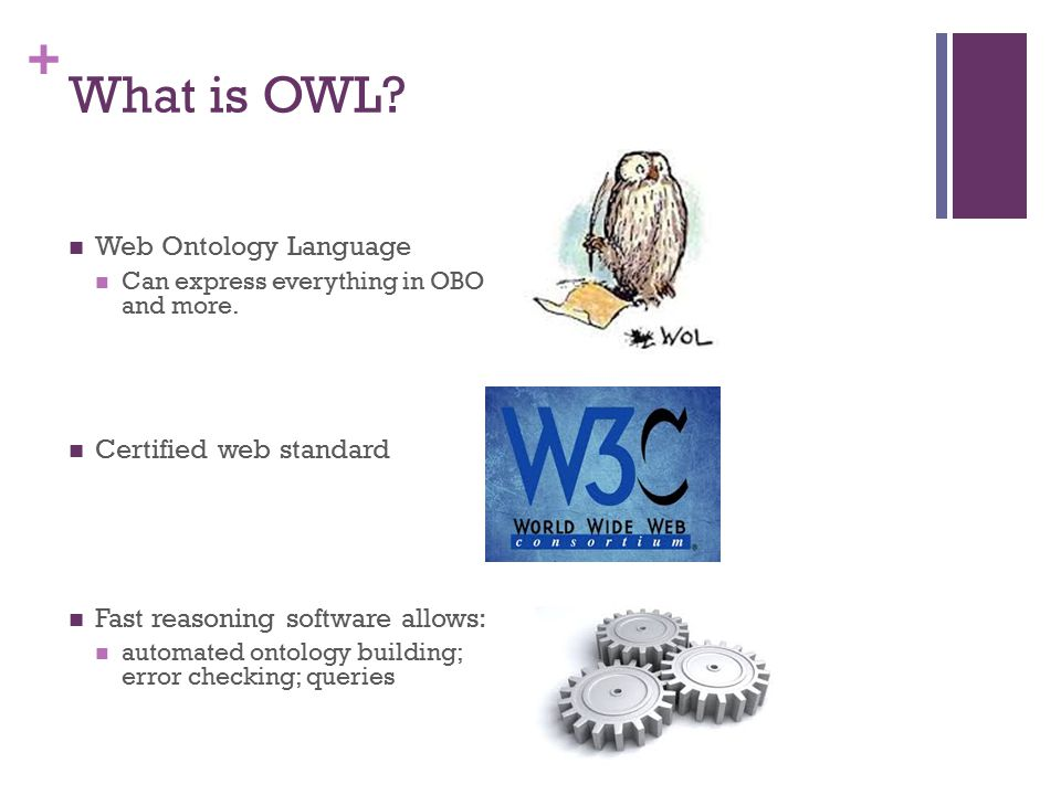+ What is OWL? Web Ontology Language Can express everything in OBO and more. Certified web standard Fast reasoning software allows: automated ontology