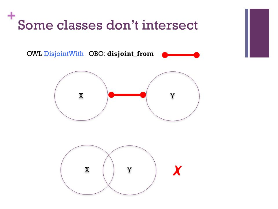+ Some classes don't intersect X X ✗ Y Y X X Y Y OWL DisjointWith OBO: disjoint_from