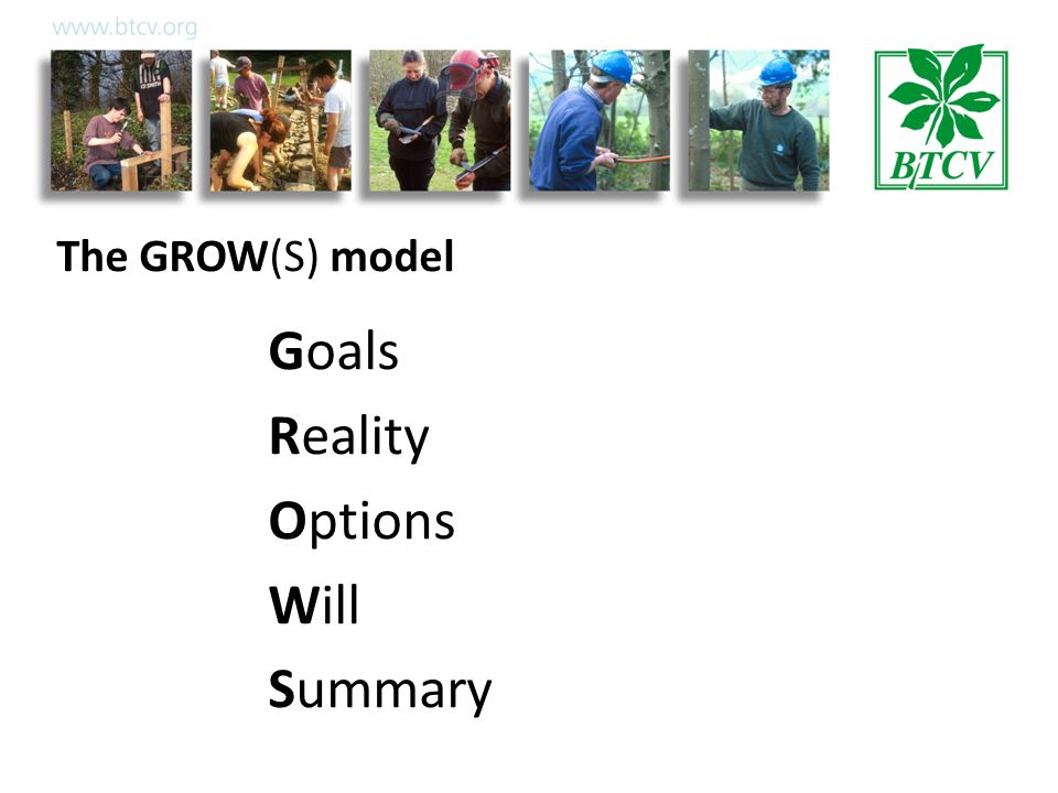 The GROW(S) model Goals Reality Options Will Summary