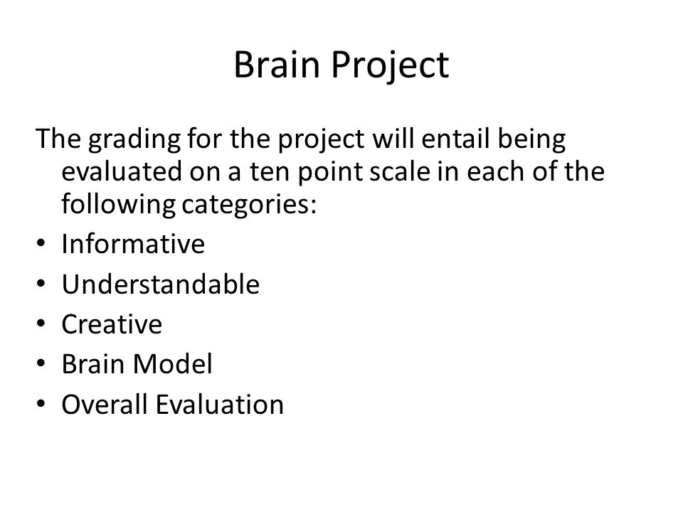Brain Project The grading for the project will entail being evaluated on a ten point scale in each of the following categories: Informative Understandable Creative Brain Model Overall Evaluation