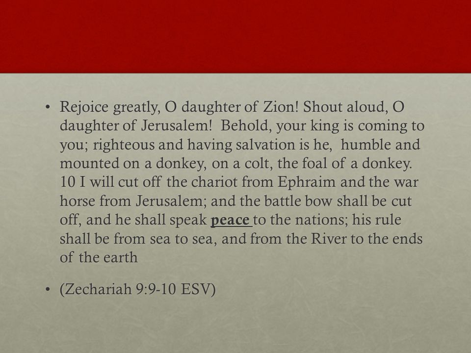 Rejoice greatly, O daughter of Zion.Shout aloud, O daughter of Jerusalem.