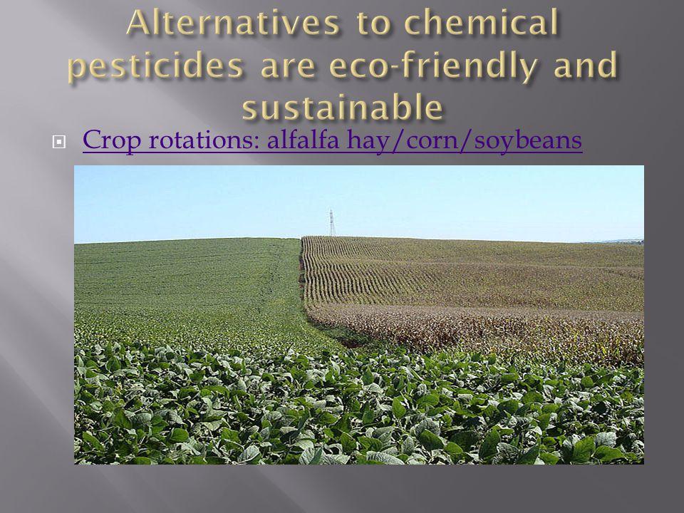  Crop rotations: alfalfa hay/corn/soybeans Crop rotations: alfalfa hay/corn/soybeans