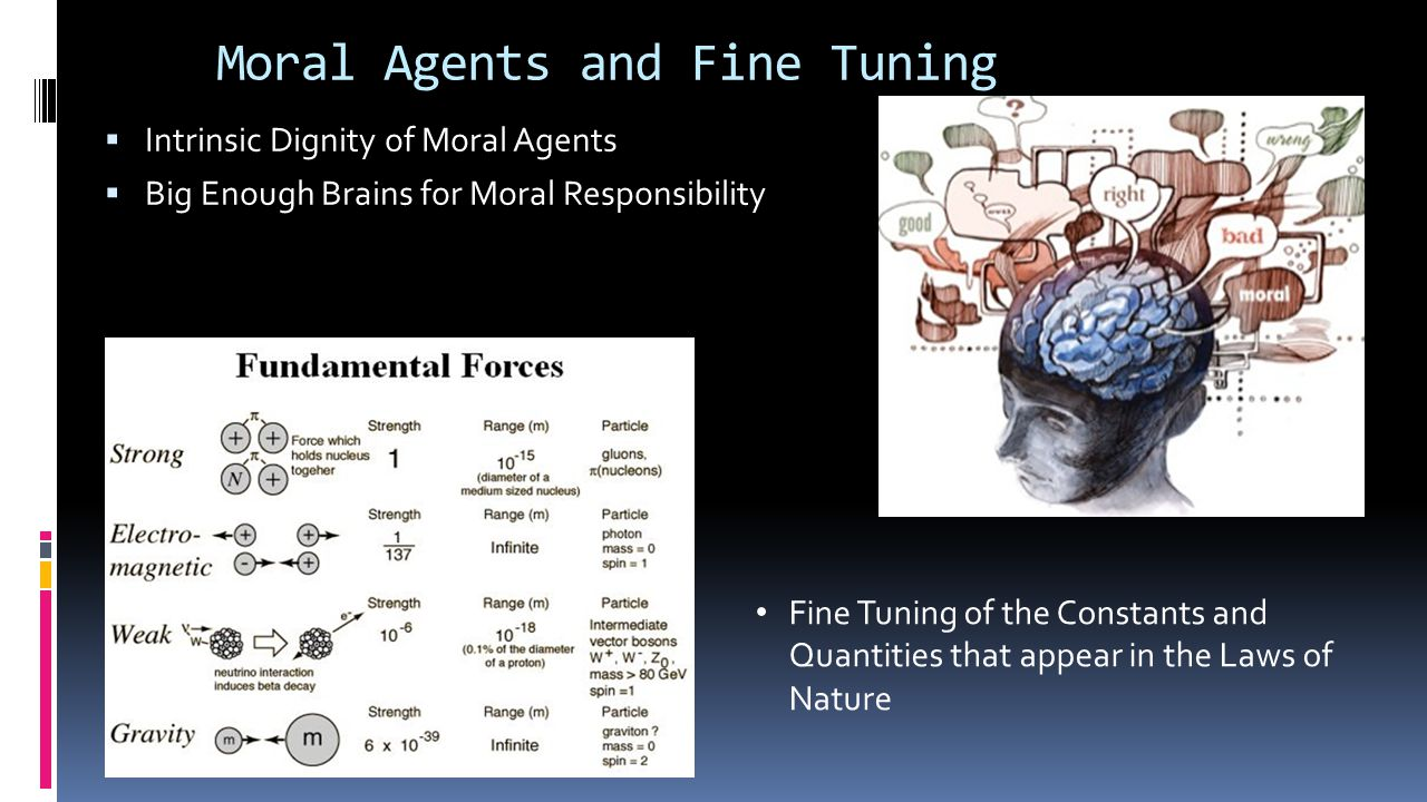 Moral Agents and Fine Tuning  Intrinsic Dignity of Moral Agents  Big Enough Brains for Moral Responsibility Fine Tuning of the Constants and Quantities that appear in the Laws of Nature