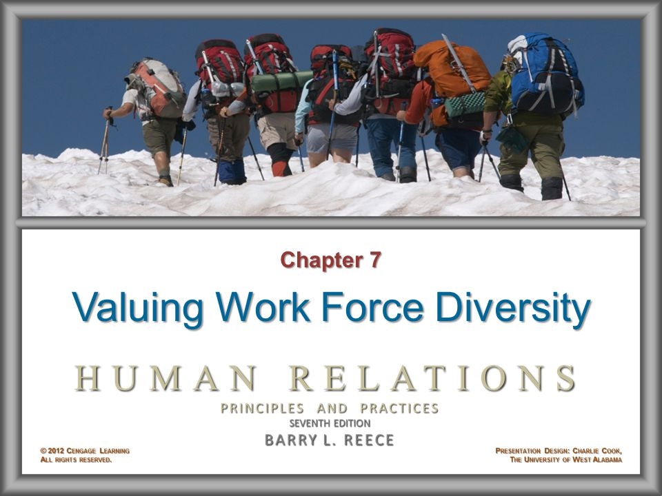 Chapter 7 Valuing Work Force Diversity