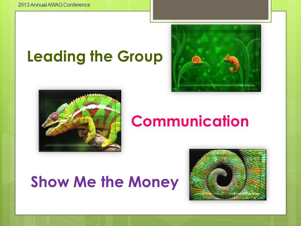 Leading the Group Communication Show Me the Money 2013 Annual AWAG Conference