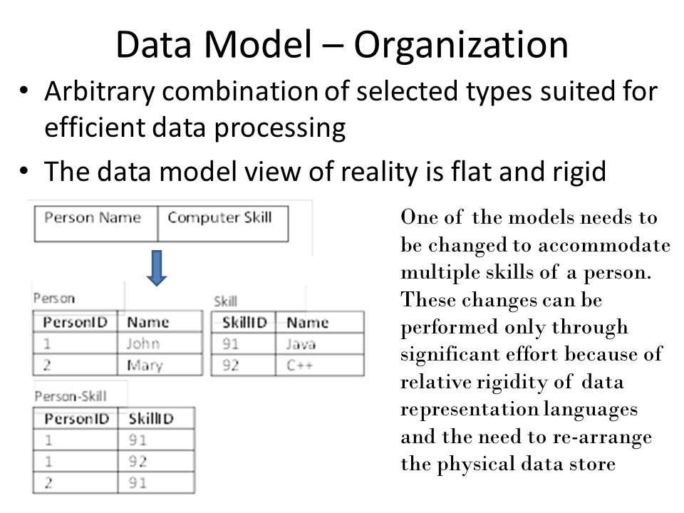 Data Model – Organization Arbitrary combination of selected types suited for efficient data processing The data model view of reality is flat and rigid One of the models needs to be changed to accommodate multiple skills of a person.