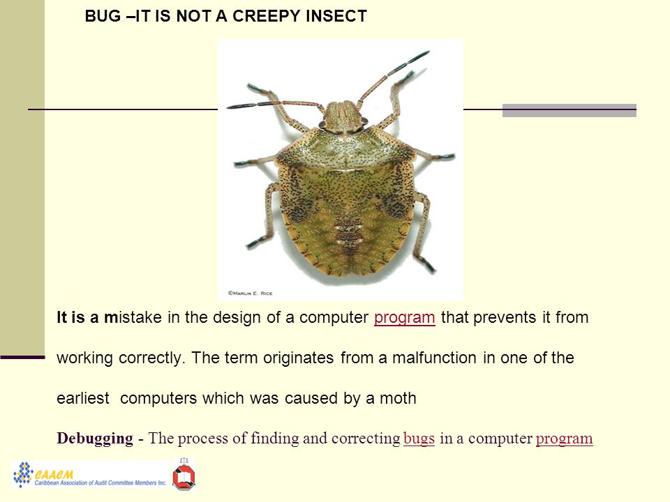 BUG –IT IS NOT A CREEPY INSECT It is a mistake in the design of a computer program that prevents it from working correctly.