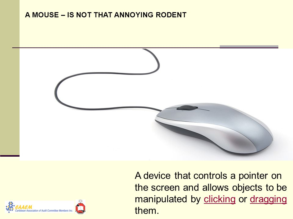 A device that controls a pointer on the screen and allows objects to be manipulated by clicking or dragging them.clickingdragging A MOUSE – IS NOT THAT ANNOYING RODENT