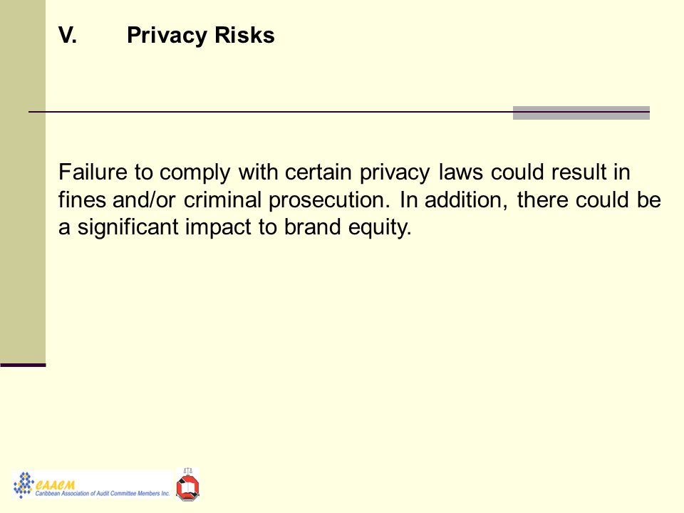 V.Privacy Risks Failure to comply with certain privacy laws could result in fines and/or criminal prosecution.