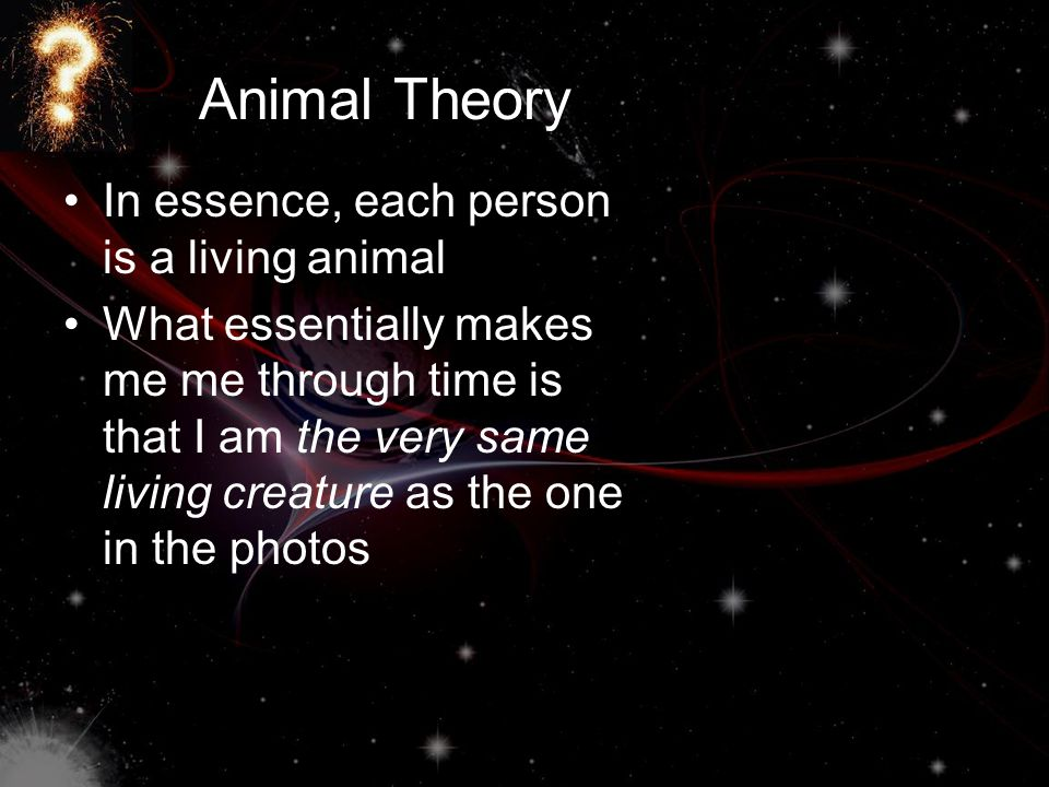 Animal Theory In essence, each person is a living animal What essentially makes me me through time is that I am the very same living creature as the o