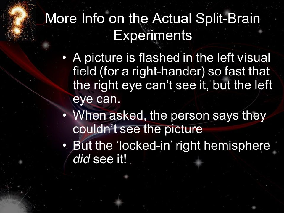 More Info on the Actual Split-Brain Experiments A picture is flashed in the left visual field (for a right-hander) so fast that the right eye can't se