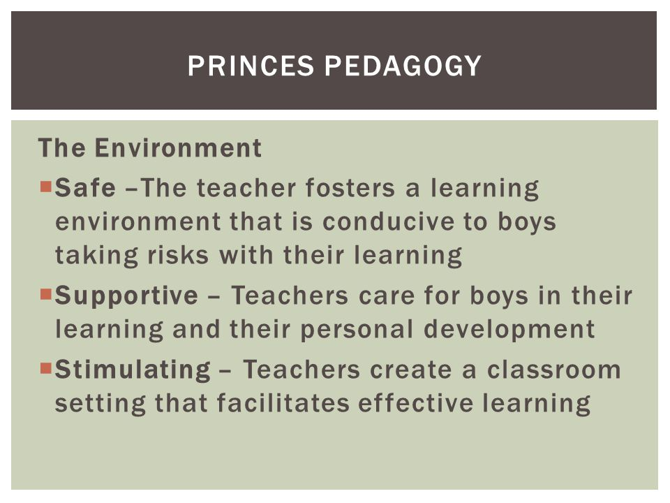 The Environment  Safe –The teacher fosters a learning environment that is conducive to boys taking risks with their learning  Supportive – Teachers care for boys in their learning and their personal development  Stimulating – Teachers create a classroom setting that facilitates effective learning PRINCES PEDAGOGY