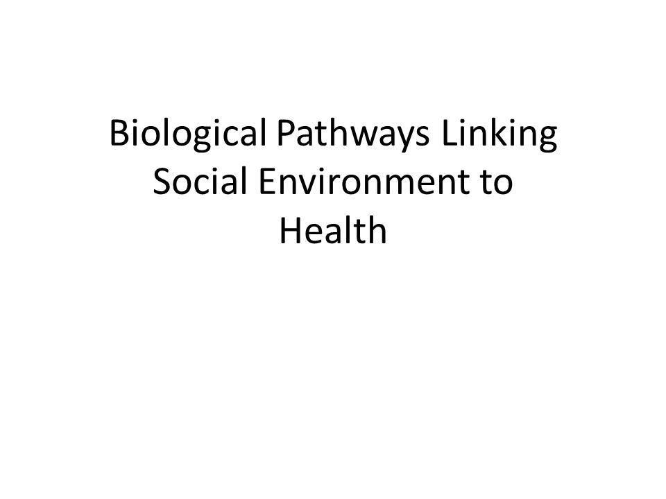 Biological Pathways Linking Social Environment to Health
