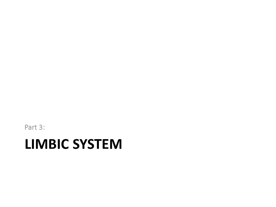 LIMBIC SYSTEM Part 3: