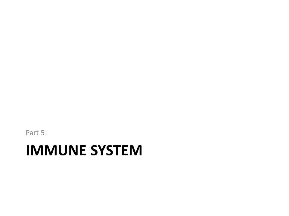 IMMUNE SYSTEM Part 5: