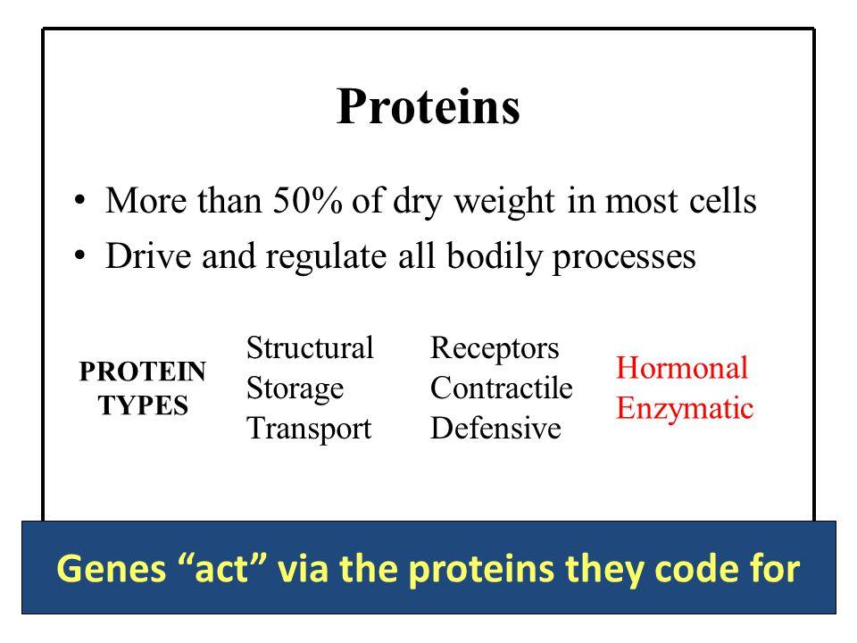 ENDOCRINE SYSTEM Part 2: