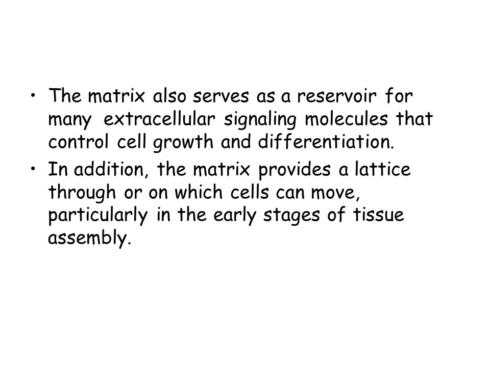 The matrix also serves as a reservoir for many extracellular signaling molecules that control cell growth and differentiation.