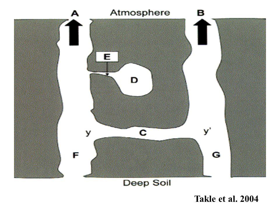 Takle et al. 2004