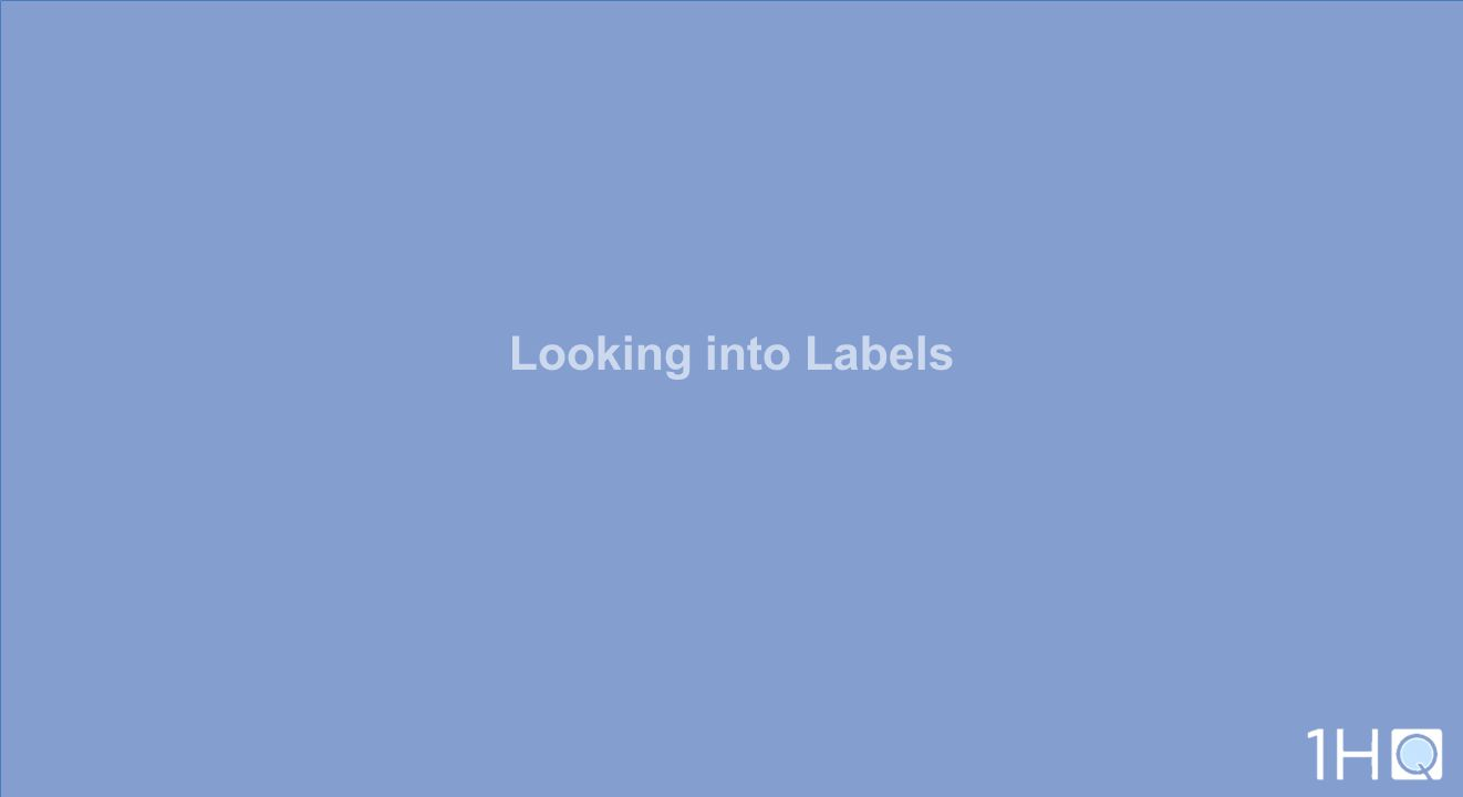 Looking into Labels