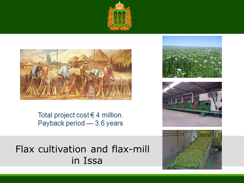 Flax cultivation and flax-mill in Issa Total project cost € 4 million. Payback period — 3,6 years