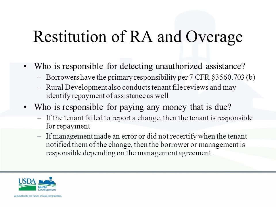 Who is responsible for detecting unauthorized assistance.