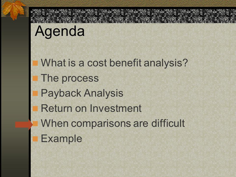 Agenda What is a cost benefit analysis.