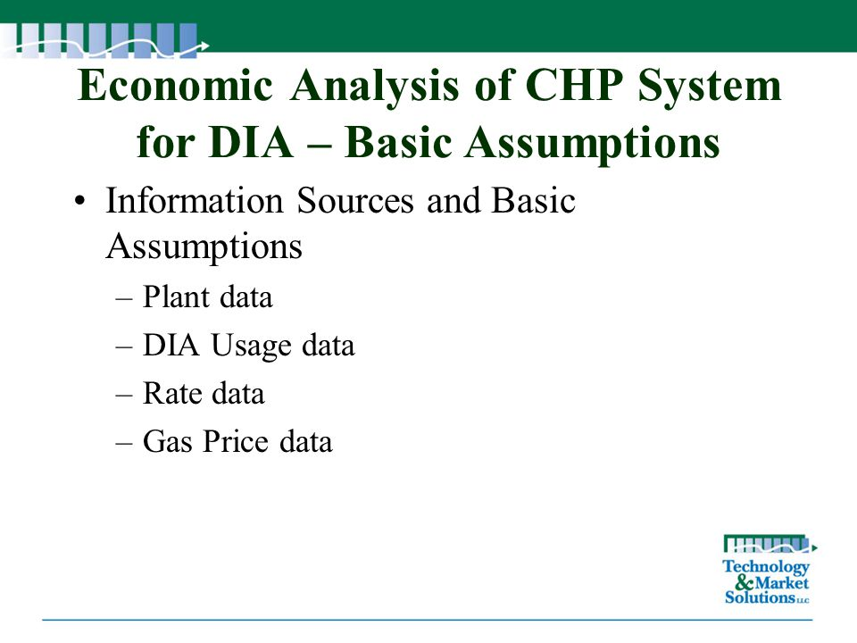 Economic Analysis of CHP System for DIA – Basic Assumptions Information Sources and Basic Assumptions –Plant data –DIA Usage data –Rate data –Gas Pric