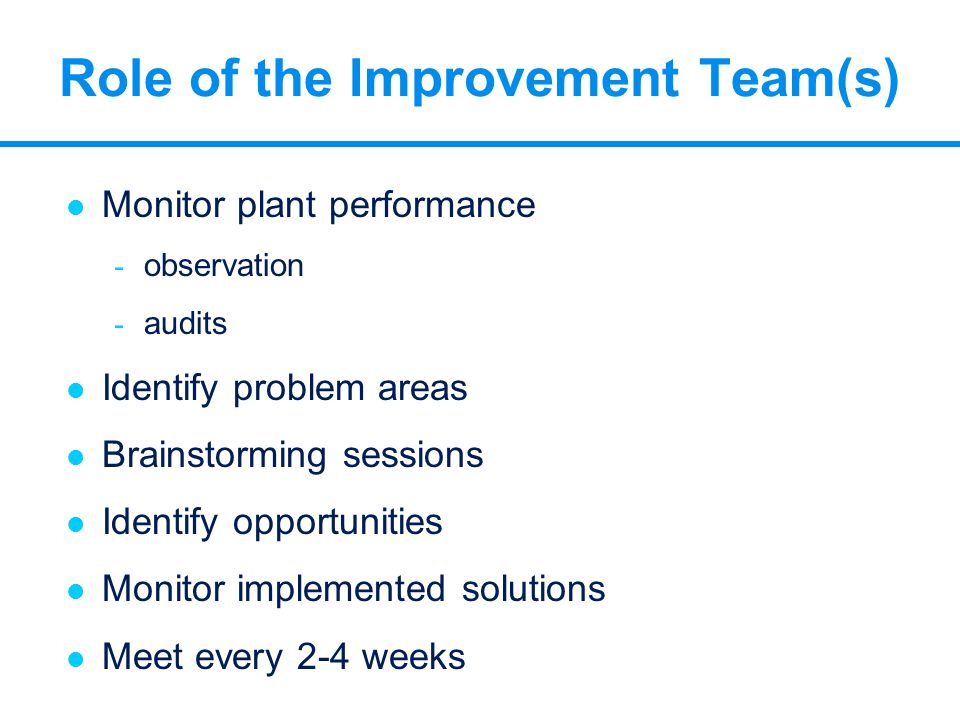 Role of the Improvement Team(s) l Monitor plant performance - observation - audits l Identify problem areas l Brainstorming sessions l Identify opport