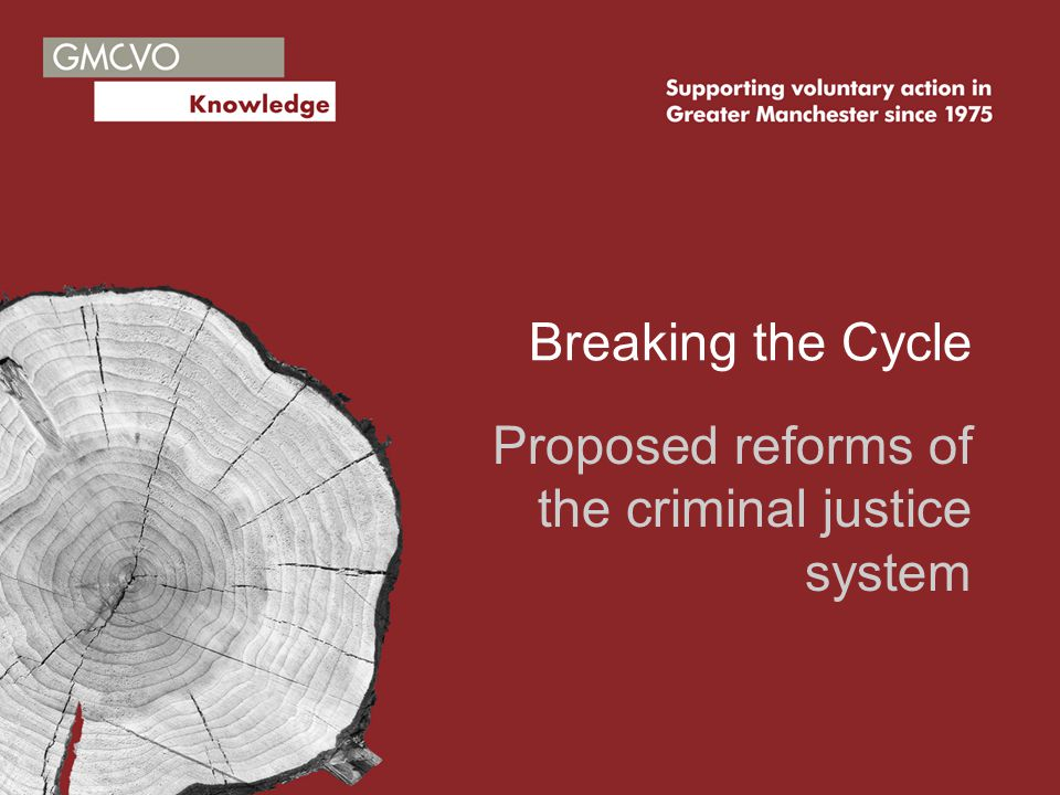 Breaking the Cycle Proposed reforms of the criminal justice system