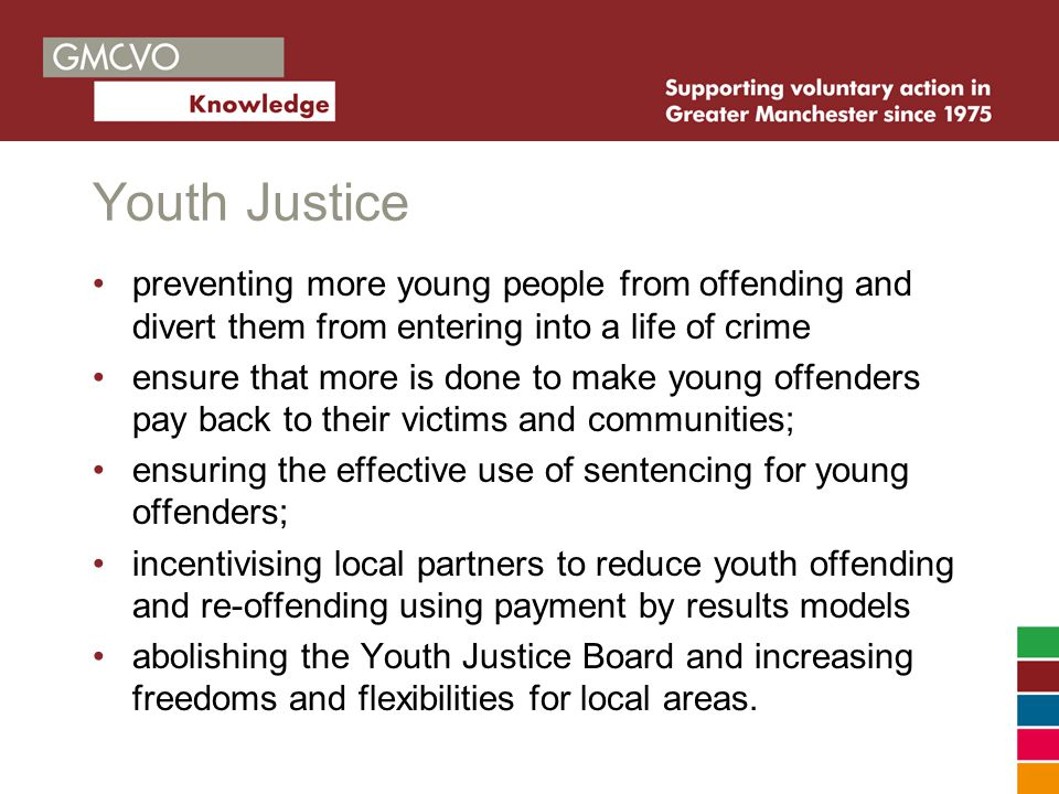 Youth Justice preventing more young people from offending and divert them from entering into a life of crime ensure that more is done to make young offenders pay back to their victims and communities; ensuring the effective use of sentencing for young offenders; incentivising local partners to reduce youth offending and re-offending using payment by results models abolishing the Youth Justice Board and increasing freedoms and flexibilities for local areas.