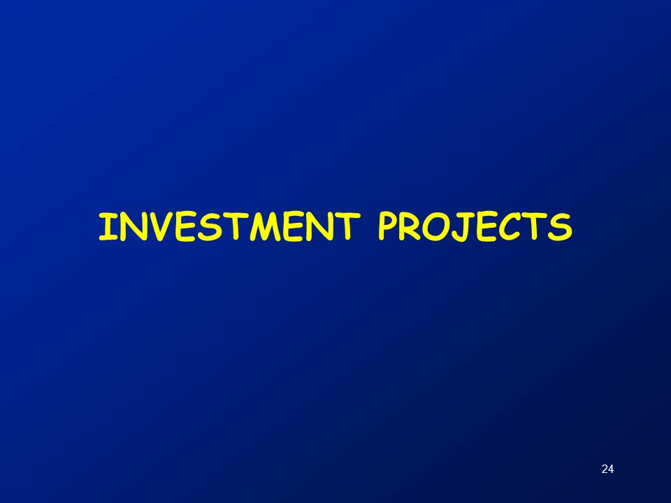 24 INVESTMENT PROJECTS